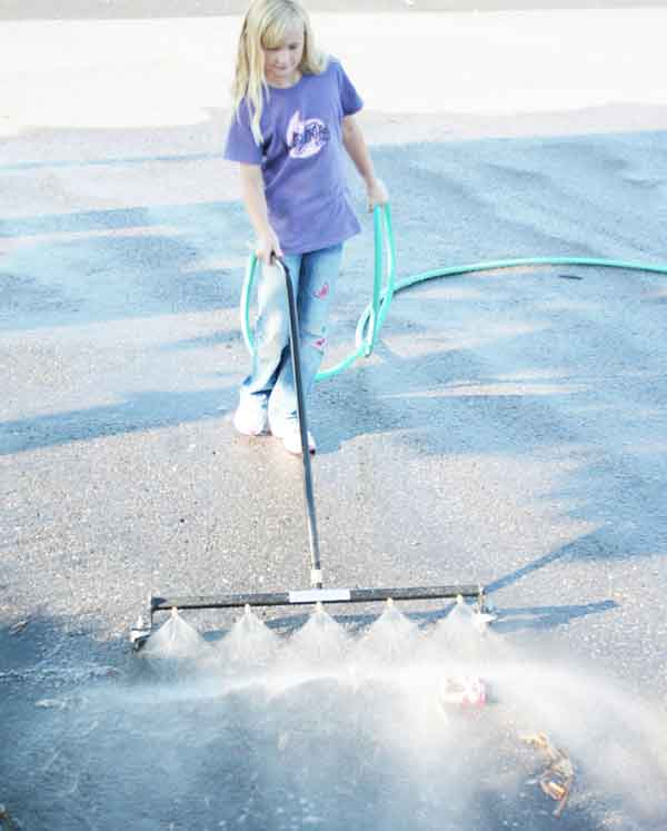 WaterSweeper Girl image